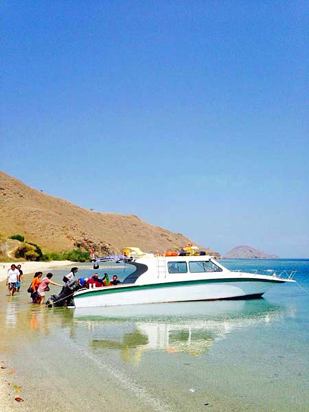 Speed Boat private tour Komodo Rinca